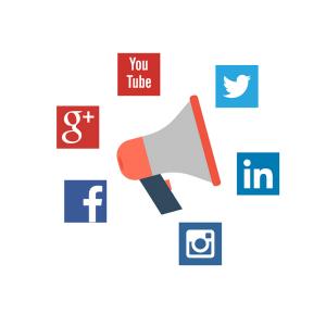 Elexi Social Media Services